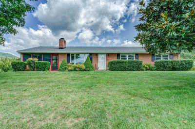 Botetourt County Single Family Home For Sale: 820 Laymantown Rd