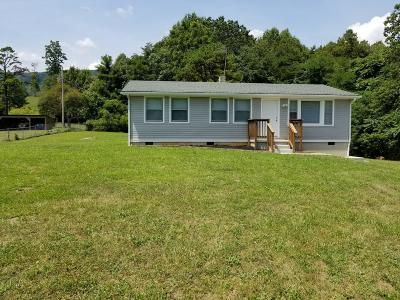 Botetourt County Single Family Home For Sale: 1520 Little Catawba Creek Rd