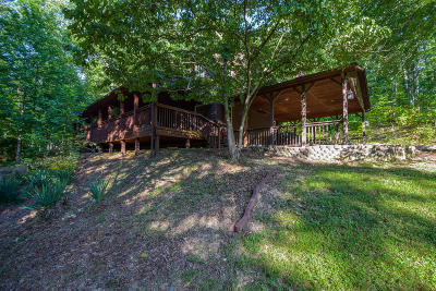 Botetourt County Single Family Home For Sale: 2270 Pico Rd