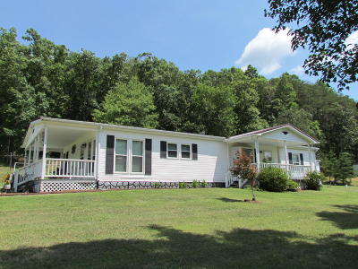 Botetourt County Single Family Home For Sale: 571 Dagger Spring Rd