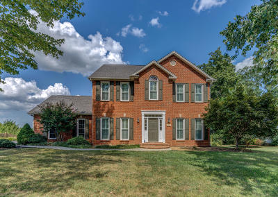 Roanoke Single Family Home For Sale: 5673 Warwood Dr