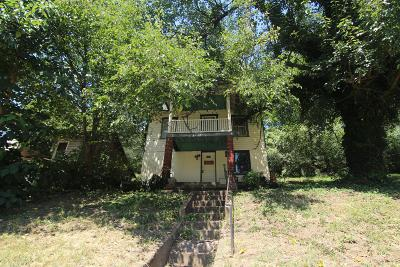 Roanoke City County Single Family Home For Sale: 1418 Wise Ave SE