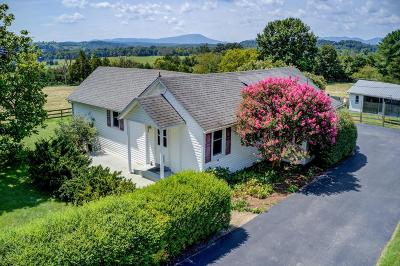Botetourt County Single Family Home For Sale: 68 Mt Pleasant Church Rd