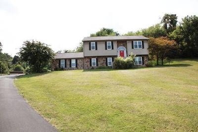 Troutville Single Family Home For Sale: 1635 Trinity Rd