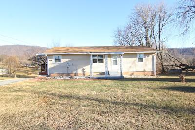 Botetourt County Single Family Home For Sale: 252 Colonial Rd