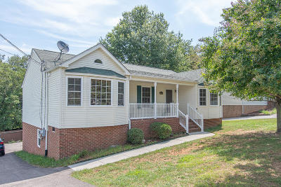 Roanoke Single Family Home For Sale: 3414 View Ave