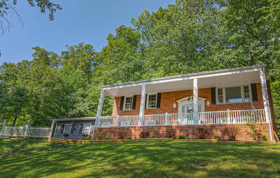 Botetourt County Single Family Home For Sale: 2596 Blue Ridge Springs Rd