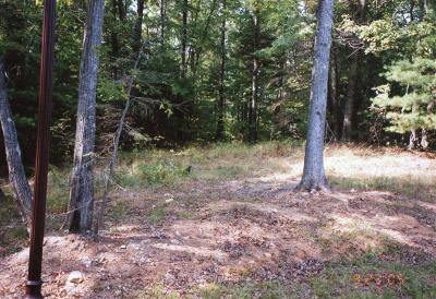 Residential Lots & Land For Sale: 162 Cobble Ln