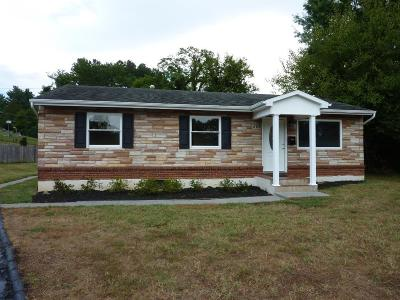 Salem Single Family Home For Sale: 206 East Hill Ct