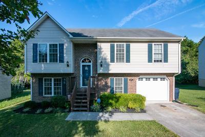 Roanoke Single Family Home For Sale: 4882 Horseman Dr NE
