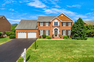 Roanoke County Single Family Home For Sale: 2914 Edgefield Cir