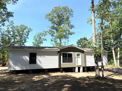 Bedford County Single Family Home For Sale: 1245 Flint Hill Rd