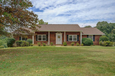 Goodview VA Single Family Home For Sale: $219,950