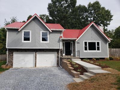 Moneta VA Single Family Home For Sale: $219,900