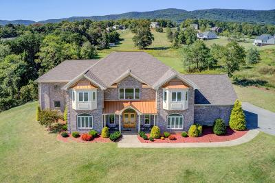 Blue Ridge Single Family Home For Sale: 151 Thornblade Way