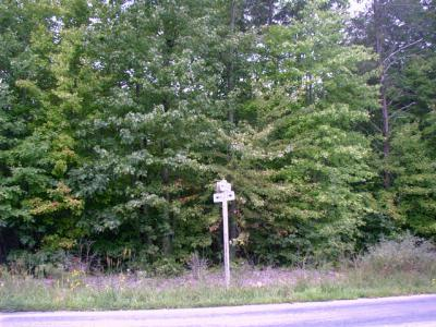 Charlotte County Residential Lots & Land For Sale: Plantersville Road