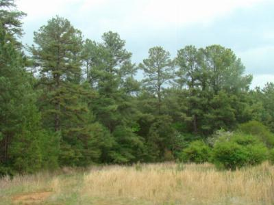 Mecklenburg County Residential Lots & Land For Sale: Highway Ninety-Two