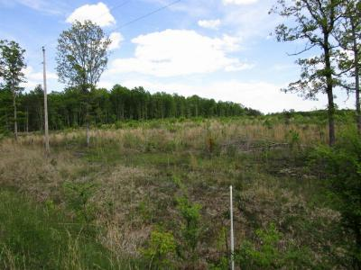 Charlotte County Residential Lots & Land For Sale: Thompson Road