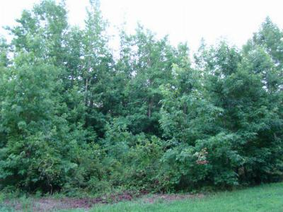 Mecklenburg County Residential Lots & Land For Sale: Lot #13-Muscadine Trail