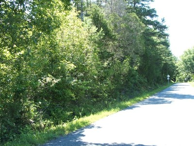 Charlotte County Residential Lots & Land For Sale: Welsh Tract Road