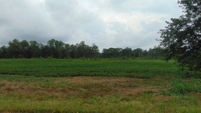 Halifax VA Residential Lots & Land For Sale: $19,000
