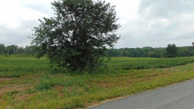 Halifax VA Residential Lots & Land For Sale: $119,000