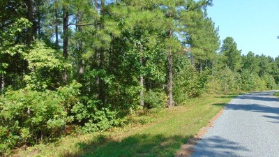 Nathalie VA Residential Lots & Land For Sale: $39,000