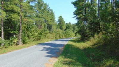 Residential Lots & Land For Sale: Clinton Rd
