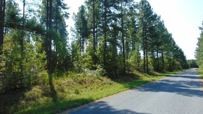Halifax County Residential Lots & Land For Sale: Clinton Rd