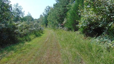 Residential Lots & Land For Sale: Sandy Trail