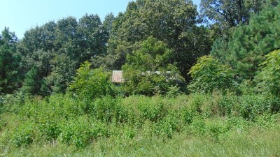 Residential Lots & Land For Sale: Blue Rock Trl