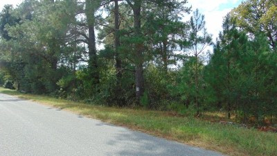 Residential Lots & Land For Sale: Union Church Rd