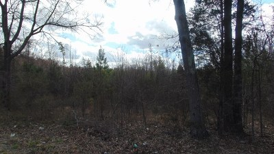 South Boston VA Residential Lots & Land For Sale: $99,900