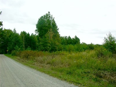 Charlotte County Residential Lots & Land For Sale: Pleasant Grove Road