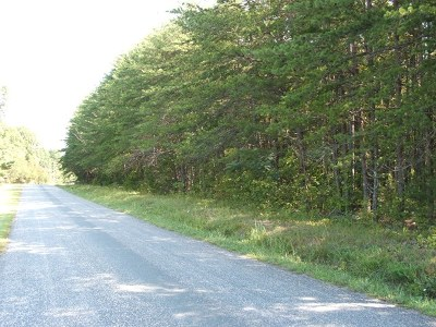 Charlotte County Residential Lots & Land For Sale: Deuprees Store Road