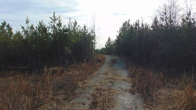 Residential Lots & Land For Sale: Bill Tuck Hwy