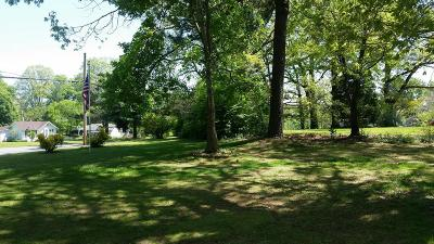 Charlotte County Residential Lots & Land For Sale: 301 Randolph & 306 Park