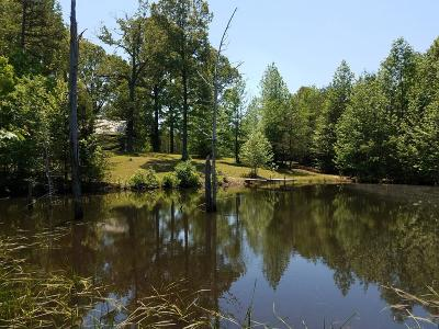 Charlotte County Single Family Home For Sale: 770 Log House Lane