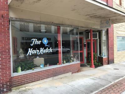 Halifax County Commercial For Sale: 519 North Main St