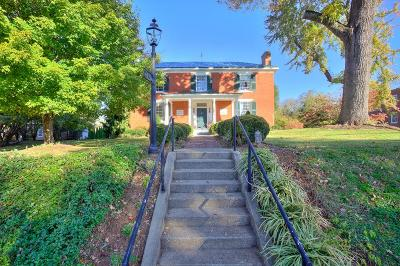 Charlotte County Single Family Home For Sale: 252 David Bruce Avenue