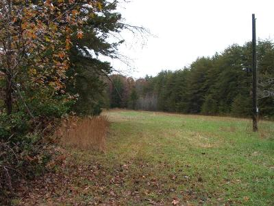 Charlotte County Residential Lots & Land For Sale: Ice Pond Road