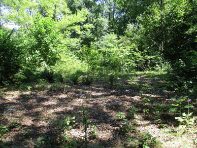 Charlotte County Residential Lots & Land For Sale: 2727 County Line Rd