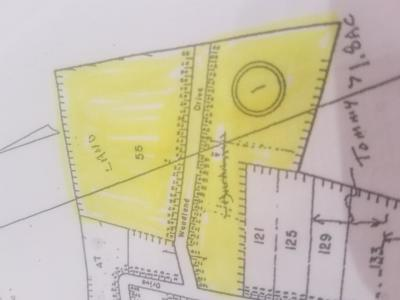 Mecklenburg County Residential Lots & Land For Sale: Woodland Drive