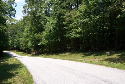 Mecklenburg County Residential Lots & Land For Sale: Lot 4 Buckhead Dr