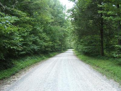 Charlotte County Residential Lots & Land For Sale: Adams Road