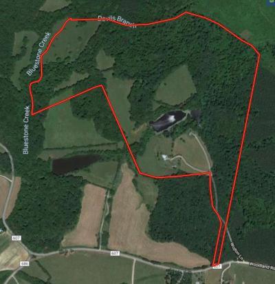 Mecklenburg County Single Family Home For Sale: 394 Wojton Lane