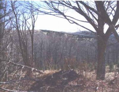 Whitetop Residential Lots & Land For Sale: Middle Fork Lane