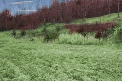 Wytheville Residential Lots & Land For Sale: Lee Highway