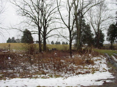 Abingdon Residential Lots & Land For Sale: Tr.#9 Osceola Rd.