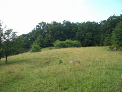 Carroll County, Grayson County Residential Lots & Land For Sale: Tbd Comers Rock Road